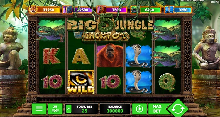 big 5 jungle jackpot stakelogic