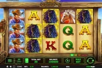 Wild Stallion Slot